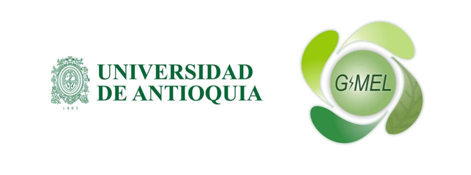 Universidad de Antioquia – GIMEL
